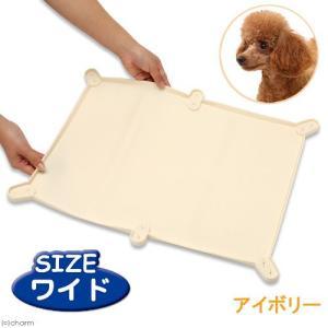ターキー NEWトイレマット ワイド アイボリー 57.7×43.7cm 犬用トイレ 関東当日便