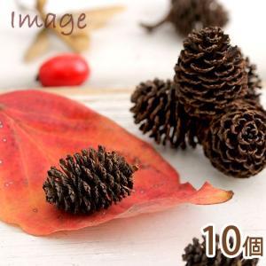 やしゃぶしの実 10個 クリスマス 関東当日便|chanet