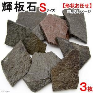 形状お任せ 輝板石 Sサイズ 3枚 国産品 関東当日便 chanet