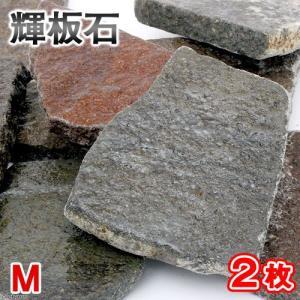 形状お任せ 輝板石 Mサイズ 2枚 国産品 関東当日便 chanet