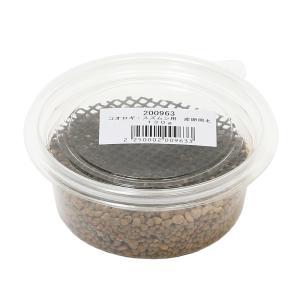 メーカー:Leaf Corp メーカー品番: _insect MS34 muryotassei_20...
