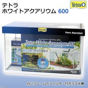 テトラ ホワイトアクアリウム 600 60cm水槽セット 初心者 お一人様1点限り 関東当日便