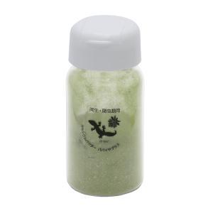 カルシウムパウダー パパイヤプラス 45g 両生・爬虫類専用 飼料添加剤 爬虫類 サプリメント 添加剤|chanet