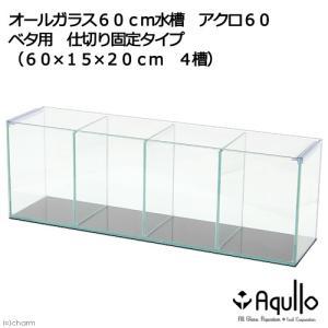 ベタ用 60cm仕切りオールガラス水槽 アクロ60BETTA 仕切り固定タイプ(60×15×20cm 4槽)Aqullo アクアリウム用品 関東当日便|chanet