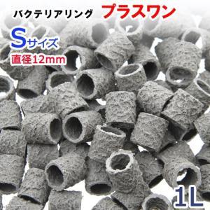 バクテリアリング プラスワン Sサイズ 直径12 1L 関東当日便|chanet