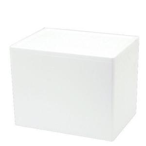 発泡スチロール箱 HN232×H(幅46×奥行33×高さ34cm) フタ付き お一人様1点限り
