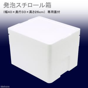 発泡スチロール箱(中)TI−220−2(幅40×奥行33×高さ26cm) フタ付き お一人様1点限り