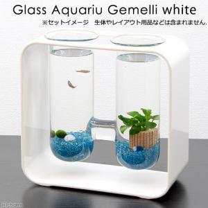 アウトレット品 カミハタ グラスアクアリウム ジェメリ ホワイト 訳あり