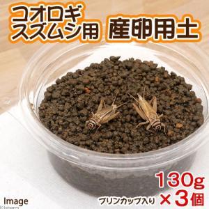 メーカー:Leaf Corp メーカー品番: _insect MS34 muryotassei_40...