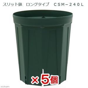 スリット鉢 ロングタイプ CSM−240L 5個入り ガーデニング 鉢 お一人様1点限り|チャーム charm PayPayモール店
