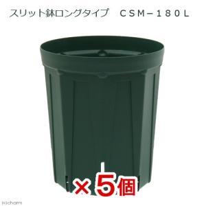 スリット鉢 ロングタイプ CSM−180L 5個入り ガーデニング 鉢 お一人様1点限り|チャーム charm PayPayモール店