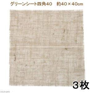 アウトレット品 グリーンシート(麻布)四角40 40×40 3枚 訳あり 関東当日便|chanet