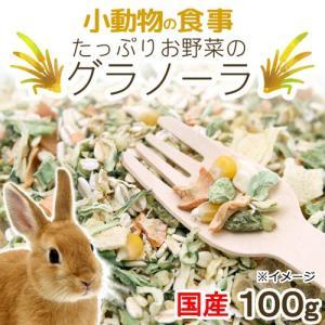 小動物の食事 たっぷりお野菜のグラノーラ 100g おやつ 無添加 無着色 関東当日便|chanet