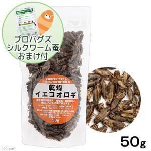 乾燥イエコオロギ 50g(約600〜650匹入り) プロバグズミルワーム20gおまけ付き 関東当日便 chanet