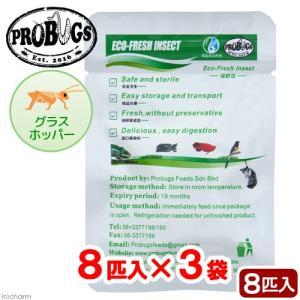 プロバグズ 真空生昆虫 グラスホッパー 8匹入×3袋セット PROBUGS ECO-FRESH GR...
