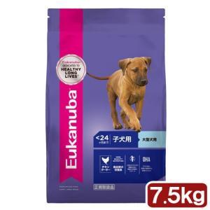 ユーカヌバ Eukanuba ラージ パピー 7.5kg 子犬用 大型犬用 〜12ヶ月まで 関東当日便|chanet