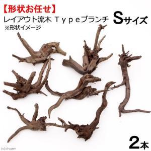 形状お任せ レイアウト流木 Typeブランチ Sサイズ(10〜20cm) 2本セット 関東当日便