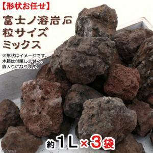 形状お任せ 富士ノ溶岩石 粒サイズミックス(約1〜7cm) 3L 関東当日便