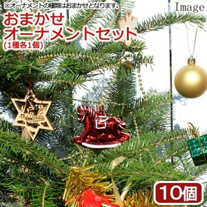 おまかせクリスマスオーナメント10種セット chanet