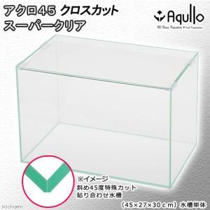 45cm水槽(単体)クロスカット スーパークリア アクロ45X(45×27×30cm)オールガラス水...