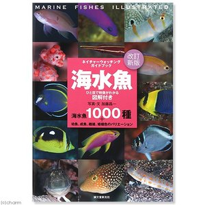 ネイチャーウォッチングガイドブック 改定新版 海水魚 書籍 関東当日便の商品画像|ナビ