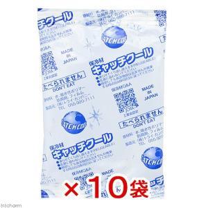 キャッチクール(保冷剤) CH−100PL 10袋入り 関東当日便|chanet