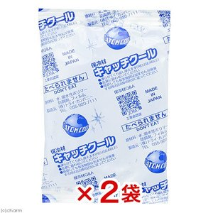 キャッチクール(保冷剤) CH−100PL 2袋入り 関東当日便|chanet