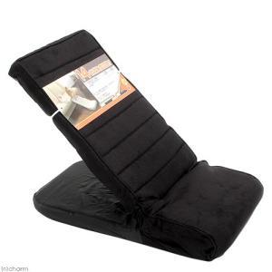 ペット用スロープ ブラック 14段階高さ調節可能 介護 ペットスロープ お一人様1点限り 関東当日便|chanet