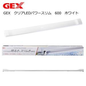 GEX クリアLEDパワースリム 600 ホワイト