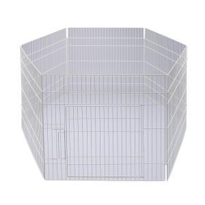 GEX ラビットサークルワイド 関東当日便|chanet
