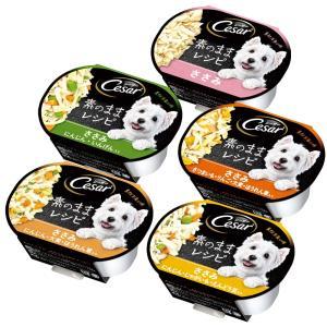 アソート シーザー 素のままレシピ 5種セット 関東当日便|chanet