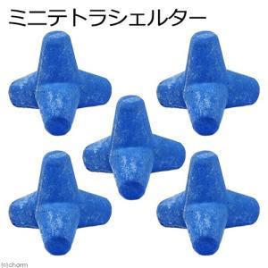 ミニテトラシェルター ブルー 5個 アクアリウム対応 高機能セラミックセメント製