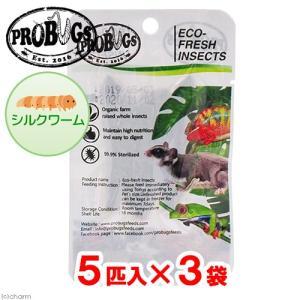 プロバグズ 真空生昆虫 シルクワーム (5匹×3袋入) PROBUGS ECO-FRESH SLLK...