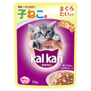… ybrand_code f7k_pu5_marcat キャットフード 猫フード ウェットフード ...