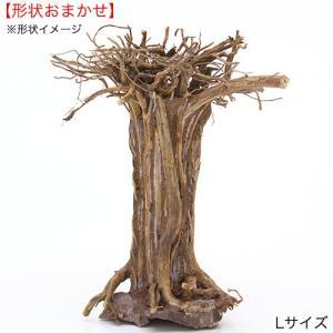形状お任せ レイアウト盆栽流木 L 1本