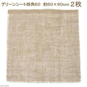 アウトレット品 グリーンシート(麻布)四角60 60×60 2枚 訳あり 関東当日便|chanet