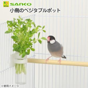 三晃商会 SANKO 小鳥のベジタブルポット 小鳥 菜さし・野菜入れ