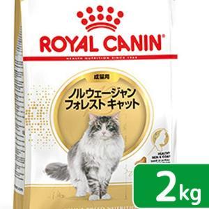 ロイヤルカナン 猫 ノルウェージャン フォレスト キャット 2kg ジップ付 関東当日便|chanet