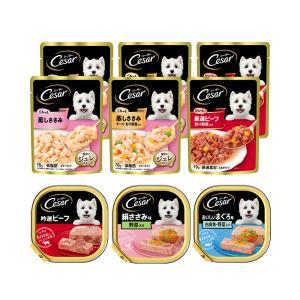マース シーザー 成犬用 人気の味食べ比べセット トレイ3種各1個 + パウチ3種各2袋 関東当日便|chanet