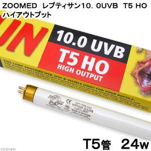 メーカー:ZOOMED ズーメッド 品番:OS5-24 ▼▲ UVBを照射するT5管! 交換球 ZO...