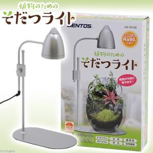 メーカー:GENTOS メーカー品番:DK-S91SB ▼▲ sfset _aqua _garden...