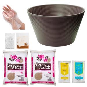 軽量で丈夫なスイレン鉢に水辺植物に適した用土のセット!スイレンやメダカ用に作られたチャームオリジナル...