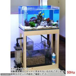 (大型)(海水魚)オーバーフロー水槽セット クロミス60 海水スターターセット 50Hz(東日本用) 別途大型手数料・同梱不可・代引不可|chanet