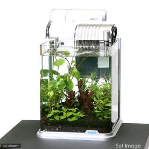 (水草)テトラ RG−20LE おまかせ水草レイアウト水槽セット 本州・四国限定|chanet
