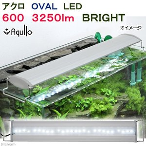 アクロ OVAL LED 600 3250lm BRIGHT Aqullo Series 60cm水槽用照明 ライト 熱帯魚 水草 関東当日便|chanet