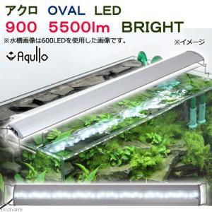 アクロ OVAL LED 900 5500lm BRIGHT Aqullo Series 同梱不可 アクアリウム用品 沖縄別途送料 関東当日便|chanet