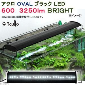アクロ OVALブラック LED 600 3250lm BRIGHT Aqullo Series 60cm水槽用照明 ライト 熱帯魚 水草 関東当日便|chanet