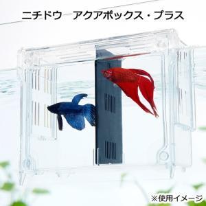 メーカー:日本動物薬品 品番:▼▲ 幅広い用途に使える!ベタ・シュリンプ・両生類などの飼育・隔離ケー...