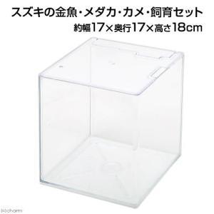 スズキの金魚・メダカ・カメ・飼育セット(幅17×奥行き17×高さ18cm) 関東当日便