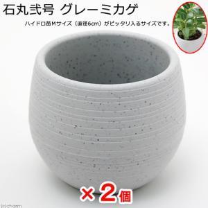 アウトレット品 石丸弐号(本体&皿セット) グレーミカゲ 2個 訳あり 関東当日便|chanet